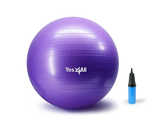 Yes4All 2000-lbs Anti Burst Stability Ball with Hand Pump (S_Purple+Pump-55 cm)