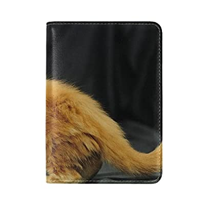 Animal Cat Maine Coon Yellow Fluffy Small Animated Real Pet Leather  Passport Holder Cover Case Travel 7d0a814764