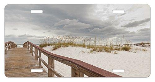 zaeshe3536658 Beach License Plate, Footpath through Sand Tropic Gulf Island National Seashore Florida Plants Landscape, High Gloss Aluminum Novelty Plate, 6 X 12 ()