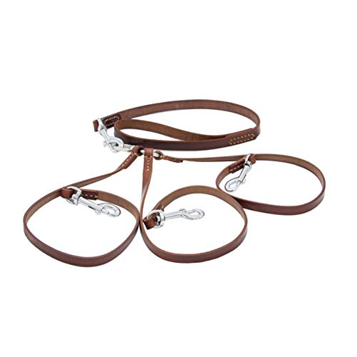 - SIXPETS Double Dog Leather Coupler Leash Dual Dog Leash Durable Dog Leashes 2 Dogs No Tangle Leather Sturdy Metal Material 360° Swivel (3)