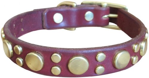 "Paco Collars - ""Tween Pickles"" - Handmade Leather Medium-Small Dog Collar- 3/4"" Wide - Silver - Black 14""-16"""