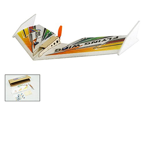 Dancing Wings Hobby RC Airplane Mini Delta Wing EPP Airplane Model Rainbow Flying Wing 600mm Wingspan KIT Tail-Pusher Version E0401