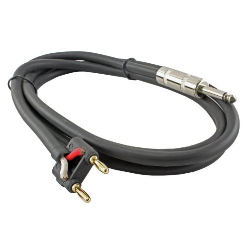 10 Foot 1/4 to Banana Heavy Duty 12 gauge Speaker Cable For