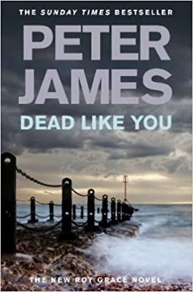 Book Dead Like You: 6 (Roy Grace series)