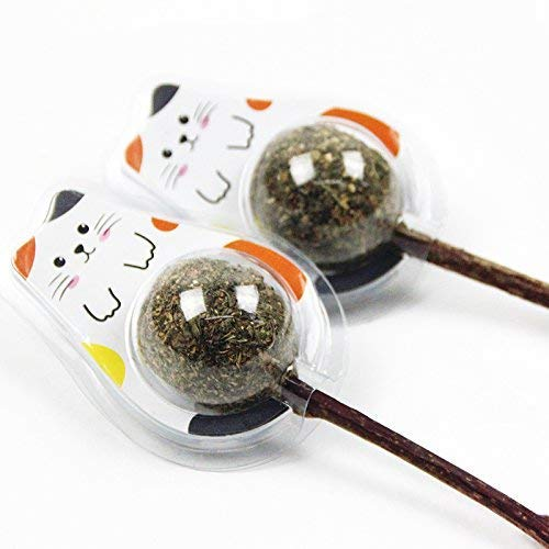 Ying-D 4PCS Natural Cat Treats Cat Toy Catnip Lollipop,Cat Mint Ball Stick Catnip Toys Cat Dental Chews Teeth Cleaning for Healthy Teeth Oral Care and Helps with Bad Breath ...
