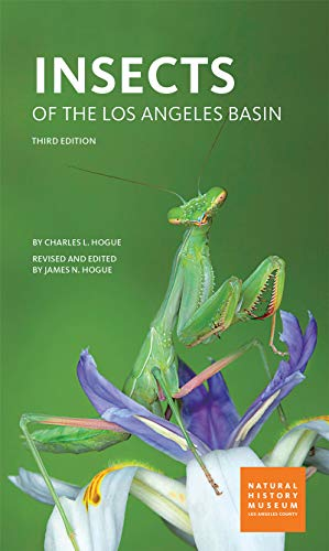 Top 5 recommendation insects of the los angeles basin