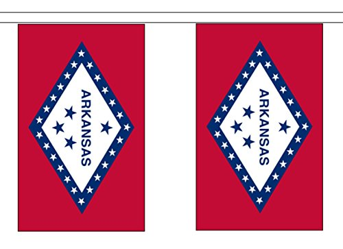 State of Arkansas String 10 Flag Polyester Material Bunting - 3m (10') Long ()
