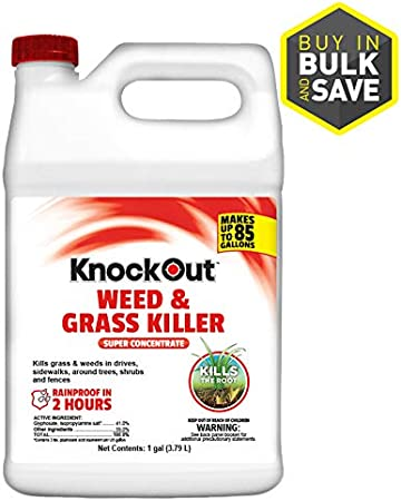 Amazon Com Knockout Weed And Grass Killer Super Concentrate 1 Gallon Garden Outdoor