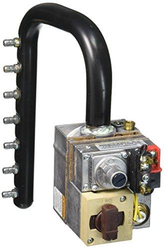 Zodiac R0496402 Propane Gas Manifold Assembly Replacement...