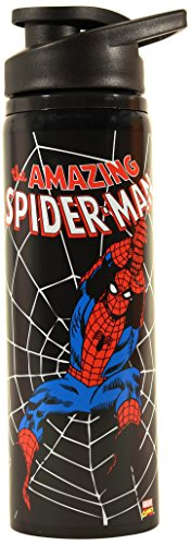 Spider Man Water Bottle - Silver Buffalo MC3289ST Marvel Spider-Man Swings Stainless Steel Water Bottle, 25-Ounces