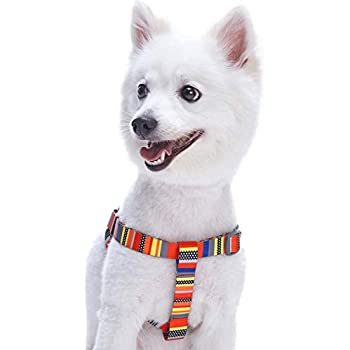 Amazon.com : Blueberry Pet 19 Colors Step-in Clic Dog Harness ...