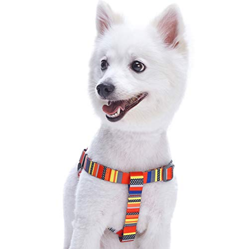 Blueberry Pet Step-in Nautical Flags Inspired Designer Dog Harness, Chest Girth 16.5 - 21.5, Small, Adjustable Harnesses for Dogs