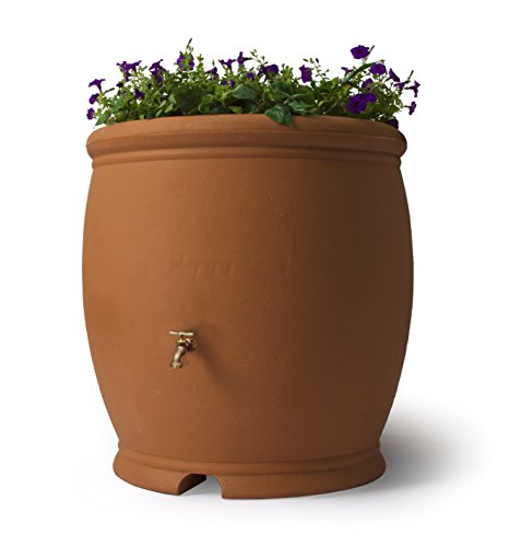 Rain Urn (Algreen 85001 Products Barcelona Rain Barrel 100-Gallon, Terra Cotta)