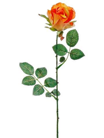 Orange Spray Roses - 27