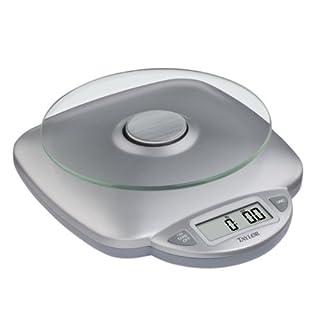 Taylor Digital Food Scale Model: 3842 (Home & Kitchen)