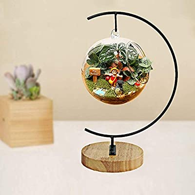 Ornament Display Stand Iron Wood Hanging Holder for Hanging Glass Globe Air Plant Terrarium Ball Personalized DIY Art Craft Home Party Wedding Christmas Decorations