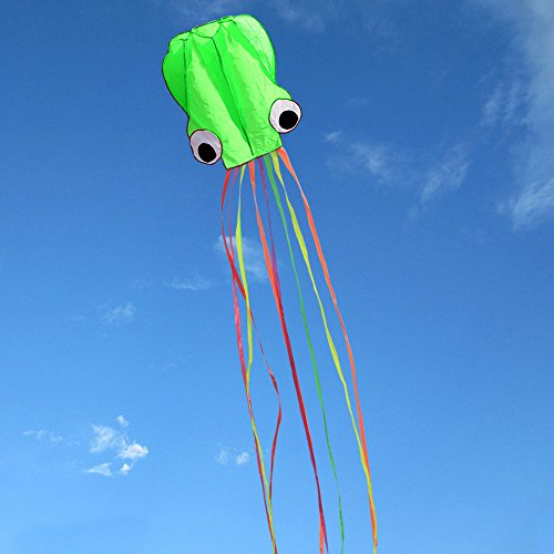 31 Inches Wide with Long Tail 157 Inches Long-Perfect for Beach or Park by Hengda kite Pack 2 Colors autiful Large Easy Flyer Kite for Kids-software octopus-Its BIG