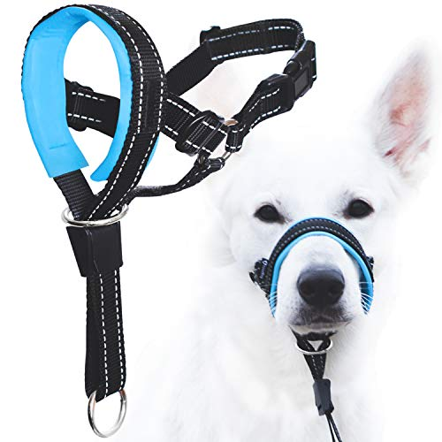 GoodBoy Dog Head Halter with Safety Strap - Stops Heavy Pulling On The Leash - Padded Headcollar for Small Medium and Large Dog Sizes - Head Collar Training Guide Included (Size 2, Blue) from GoodBoy