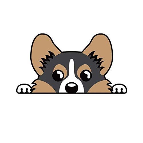 "ION Graphics Tricolor Pembroke Welsh Corgi Sticker Decal Vinyl Cardigan 5"" Bumper Locker Laptop Window - Sticks to Any Surface"