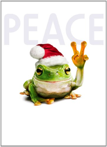 Avanti Christmas Cards, Festive Frog, 10 Count