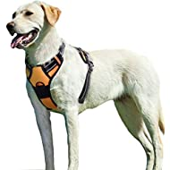 Eagloo No Pull Dog Harness with Front Clip, Walking Pet Harness with 2 Metal Ring and Handle Reflective Oxford Padded Soft Vest for Small Medium Large Breed (Orange, L)