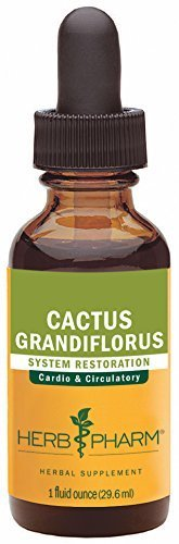 Cactus Grandiflorus Extract (Herb Pharm Cactus Grandiflorus Extract for Cardiovascular Circulatory Support - 1 Ounce by Herb Pharm)