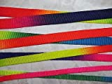 FidgetFidget Ribbon Rainbow Heavy Nylon Webbing 1'' (25mm)