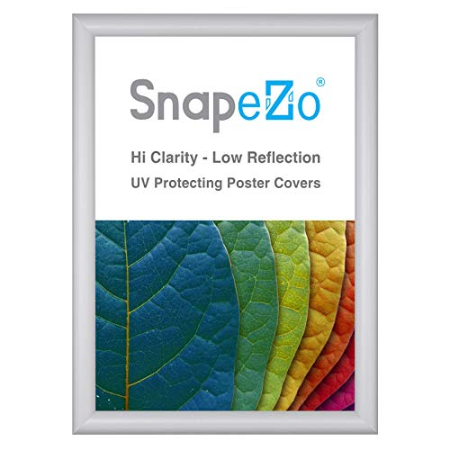 SnapeZo Poster Frame A2 Size (16.5 x 23.4 inches), Silver 1 Inch Aluminum Profile, Front-Loading Snap Frame, Wall Mounting, Sleek Series