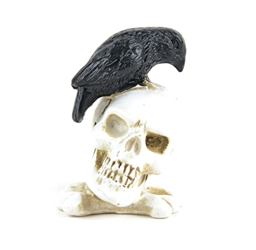 Touch of Nature Resin Skull with Crow 1.75inch