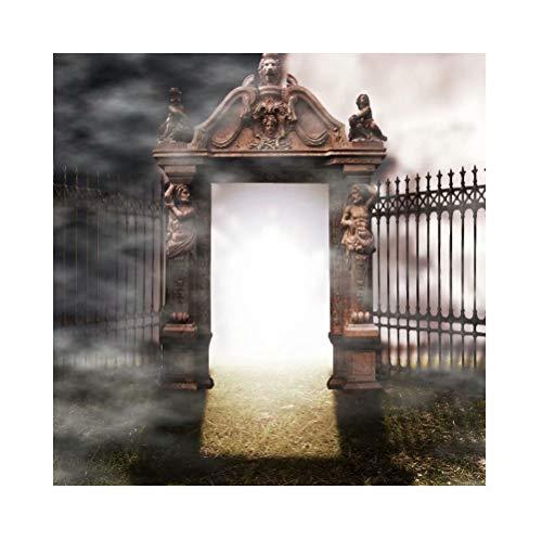Leowefowa 10x10ft Halloween Backdrop Dark Gothic Background Fantasy Gate Spooky Cemetery Grassland Iron Fence Caucasian Statues Background Halloween Hallowmas Party Decorations Portrait Photo Props