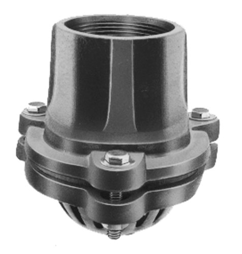 PT Coupling Ductile Iron Complete Assembly Painted Pump Foot Valve, 2'' by PT Coupling
