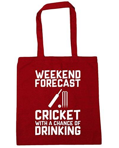 HippoWarehouse weekend Forecast Cricket con una oportunidad de Potable Tote Compras Bolsa de playa 42cm x38cm, 10litros, rosa (classic) (rosa) - 21459-TOTE-Classic Pink rojo clásico