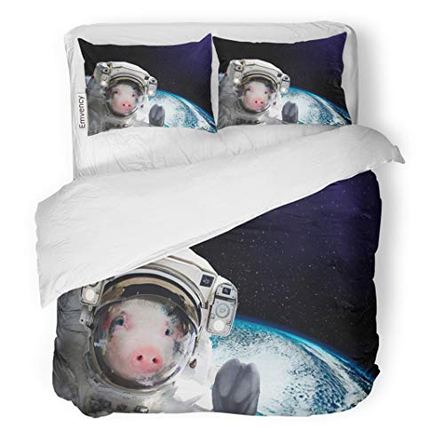 Semtomn Decor Duvet Cover Set King Size Portrait of Pig Astronaut in Space on The Globe This Furnished by NASA 3 Piece Brushed Microfiber Fabric Print Bedding Set Cover ()