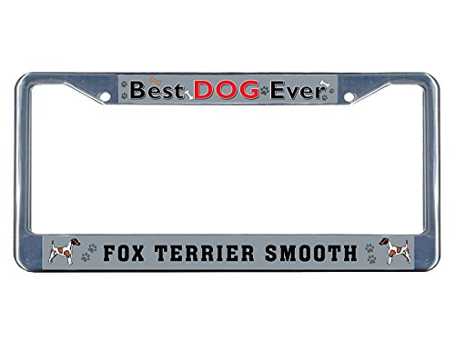 Dimanzo Fox Terrier Smooth Dog Best Dog Ever Chrome Metal License Plate Frame Tag (Smooth Fox Terrier Embroidery)