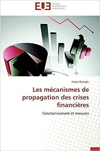 Les mécanismes de propagation des crises financières: Fonctionnement et mesures (Omn.Univ.Europ.)