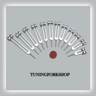 12 Pc Song Of The Spine Tuning fork for Healing with Activator,Pouch& Free Shipping