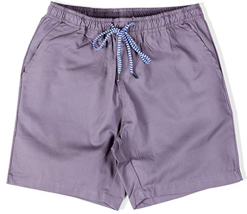 Visive Mens Short Elastic Drawstring 6 Inch Chubbies Essentials Shorts Small Grey