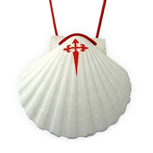 (J[B] Scallop Shell Way of St. James)