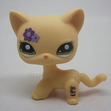 Amazon.com: Littlest Pet Shop pelo corto gato gatito ...