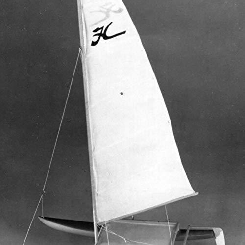 Dumas Hobie Cat Wooden Boat - Boats Dumas/model