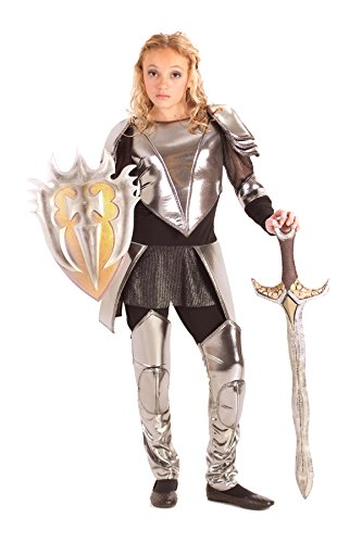 Warrior Princess Costume Size Small (Princess Paradise Tween Warrior Snow Costume, Tween Small)