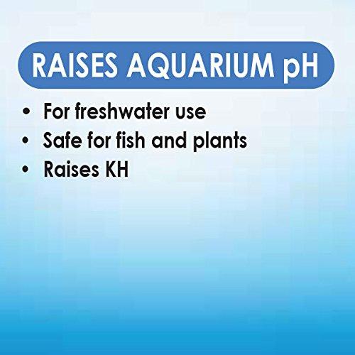 Image of API pH UP Freshwater Aquarium Water pH Raising Solution 1.25-Ounce Bottle