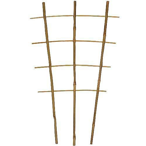 A.M. Leonard Bamboo Trellis Ladder/Fan - 30 Inches
