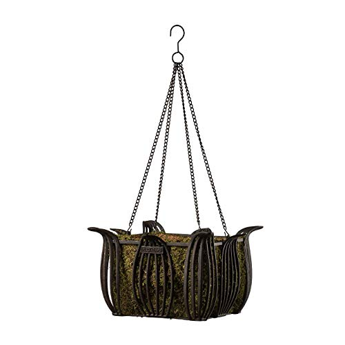 12 inch Square Leeds Wrought Iron Hanging Basket Planter with Chain and Moss Liner -Antique Bronze Finish