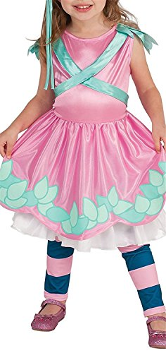 Joddie Haha Costume Little Charmers Posie Child Costume, (Costumes Rental Long Island)