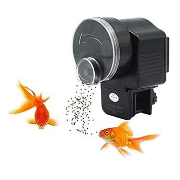 Wetrys - 1 alimentador automático de Peces, alimentador de Peces, Acuario, dispensador de
