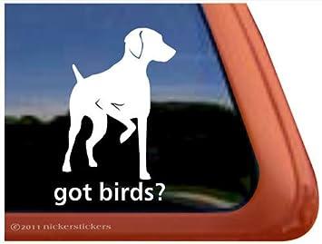 Amazoncom Got Birds Vizsla Gun Dog Vinyl Window Auto Truck - Bird window stickers amazon