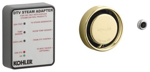 Kohler K-1737-PB Steam Adapter Kit, Vibrant Polished Brass