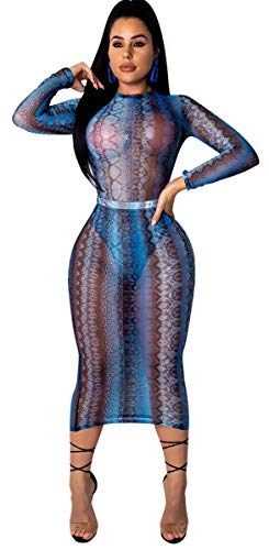 - Womens Sexy Long Sleeve O Neck Mesh Embroidered See-Through Party Clubwear Dress (S, Snake Skin Blue)