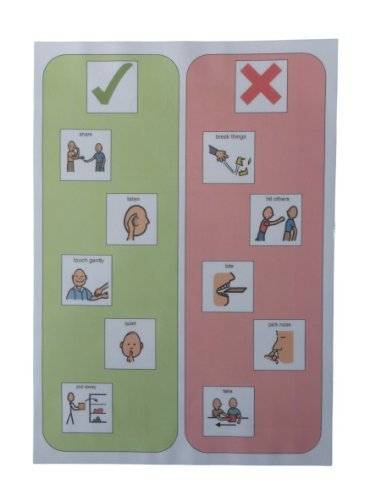 Autism Supplies And Developments Picture Exchange Communication System Behaviour Chart